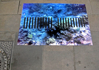 «Only Rain Down The Storm Drain»